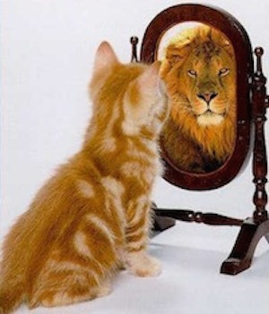 Cat looking in mirror sees lion
